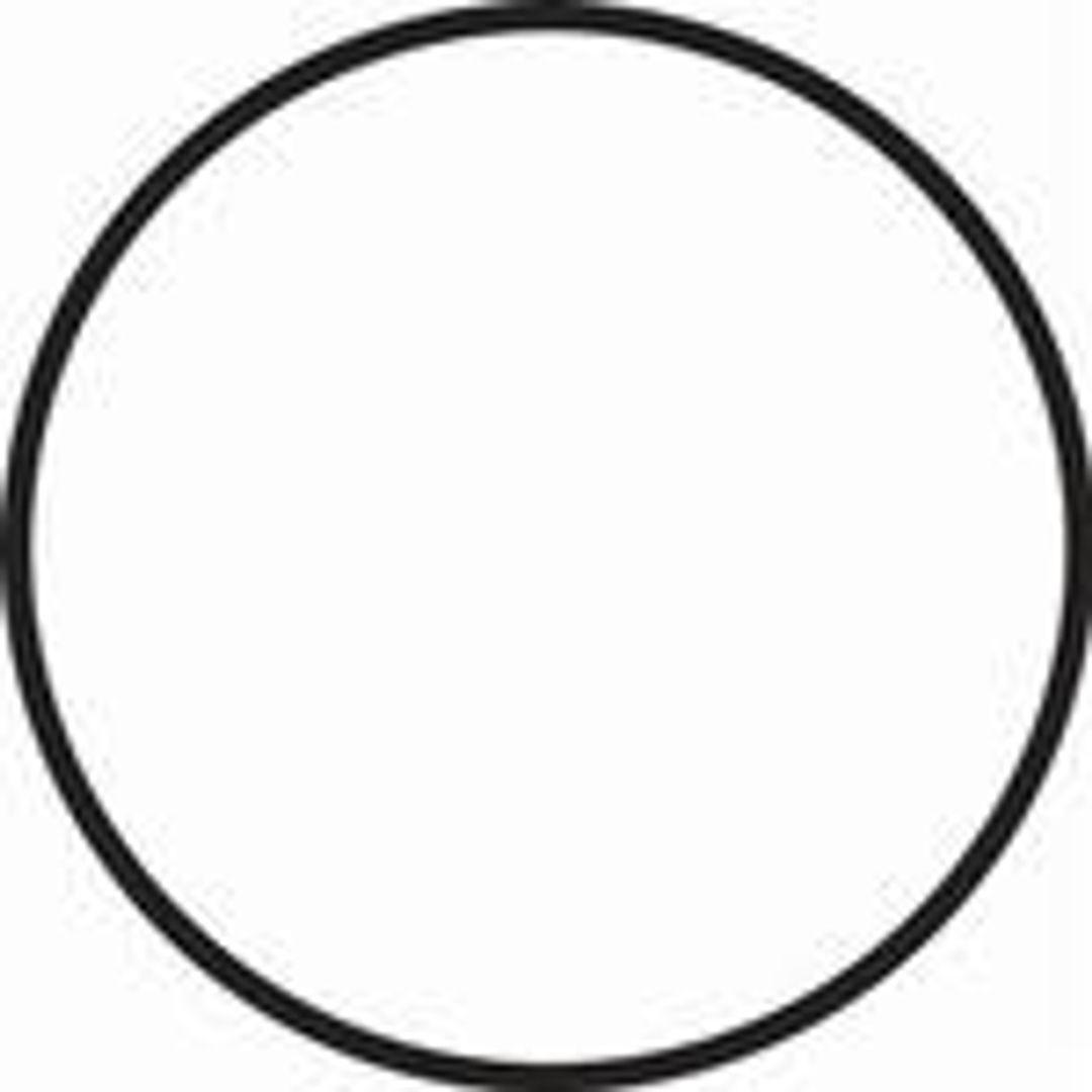 Fantasea Main Black O-Ringfür FG16 & FG15 Unterwassergehäuse