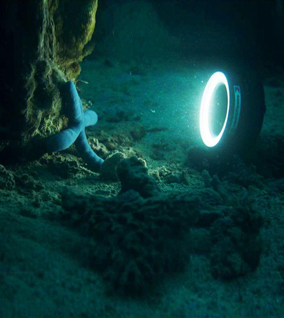 WeeFine Ring Light 1000 Ringlicht WF051 mit M67 für Unterwasserkameras – Bild 2