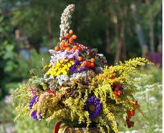 Kräuterbuschen  – Bild 1