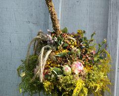Kräuterbuschen  – Bild 2