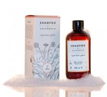 Ringelblumen-Shampoo - Shampoo alla Calendula