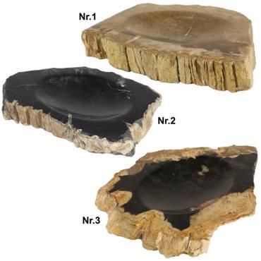 Seifenschale Naturstein Schale Fossil Fossilschale Versteinertes Holz  – Bild 1