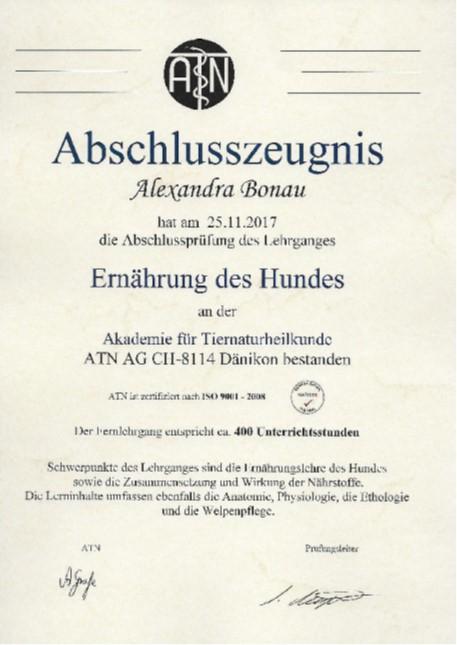 Abschlusszeugnis Alexandra Bonau