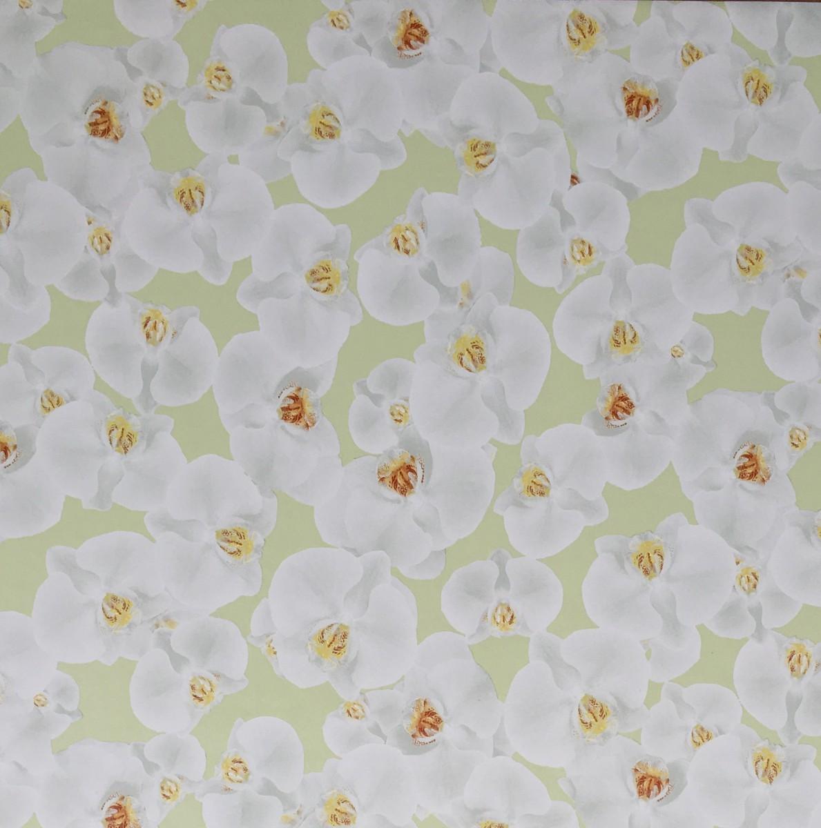 Klebefolie m belfolie wei e orchideen 67 5 cm x 200 cm for Selbstklebende mobelfolie