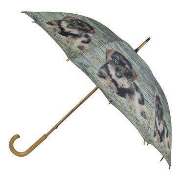 Regenschirm - Stockschirm - Dackel Teckel Welpen - Schirm