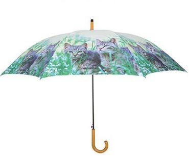 Regenschirm - Stockschirm - 2 getigerte Kätzchen Motivschirm Katzen