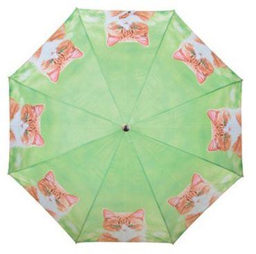 Regenschirm - Stockschirm - getigertes Kätzchen Motivschirm rote Katzen