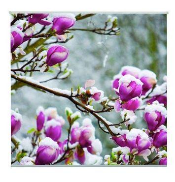 Outdoor Textilposter Magnolien mit Schnee Poster aus Stoff ca 95 x 95 cm