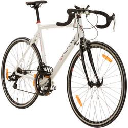 28 Zoll Rennrad Galano Giro D'Italia 3 Rahmengrößen 2 Farben