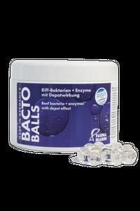 Bacto Reef Balls Riff-Bakterien + Enzyme mit Depotwirkung – Bild 4
