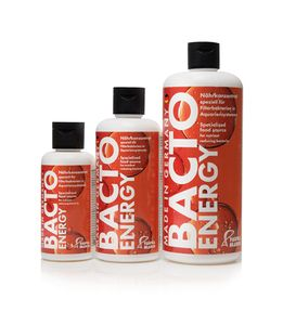 Bacto Energy 250ml specialized food source for nutrient reducing bacteria – image 2