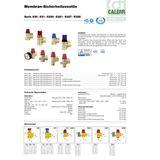 Membran Sicherheitsventil 1/2  x 3/4  Zoll 6 bar Überdruckventil