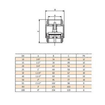 Messing Rückschlagventil 1 Zoll DN25 Rückstauklappe Rückflussverhinderer Pumpe – Bild $_i