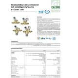 Druckminderer 1/2  Zoll DN15 für Wasser mit Manometer