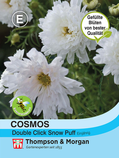 Cosmos Double click Snow Puff von Thompson & Morgan