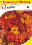 Cosmea Polidor | Cosmeasamen von Thompson & Morgan
