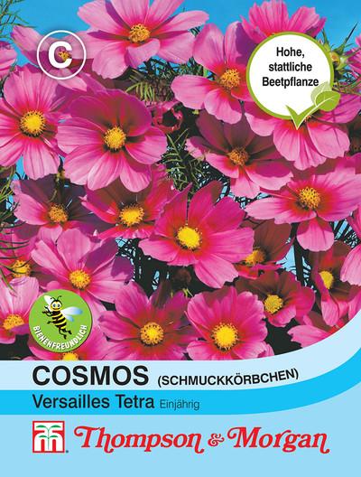 Cosmos Versailles Tetra | Cosmeasamen von Thompson & Morgan [MHD 01/2020]