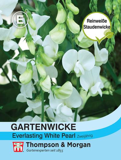 Gartenwicke Everlasting White Pearl | Gartenwickensamen von Thompson & Morgan