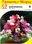 Gartenwicke Floral Tribute | Gartenwickesamen von Thompson & Morgan