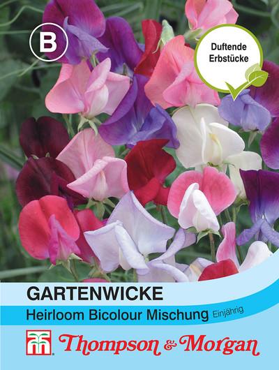 Gartenwicke Heirloom Bicolour Mischung von Thompson & Morgan
