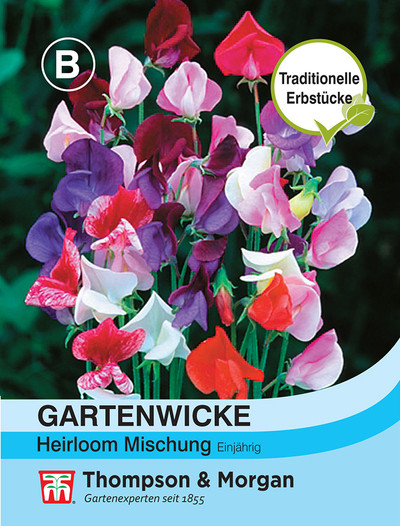 Gartenwicke Heirloom Mischung | Gartenwickesamen von Thompson & Morgan