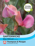 Gartenwicke Miss Willmott | Gartenwickesamen von Thompson & Morgan [MHD 01/2020]