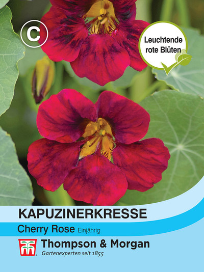 Kapuzinerkresse Cherry Rose Jewel | Kapuzinerkressesamen von Thompson & Morgan