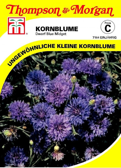 Kornblume Dwarf Blue Midget | Kornblumensamen von Thompson & Morgan