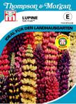 Lupine Tutti Frutti | Lupinensamen von Thompson & Morgan