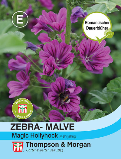 Malva - Magic Hollyhock | Malvensamen von Thompson & Morgan