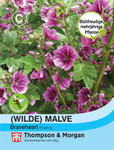 Wilde Malve sylvestris Brave Heart | Malvensamen von Thompson & Morgan