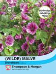 Wilde Malve sylvestris Brave Heart | Malvensamen von Thompson & Morgan