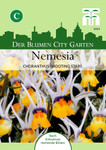 Nemesia Shooting Stars | Nemesiasamen von Thompson & Morgan [MHD 01/2020]
