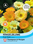 Ringelblume Fruit Twist | Ringelblumensamen von Thompson & Morgan