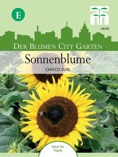 Sonneblume Choco Sun | Sonneblumensamen von Thompson & Morgan