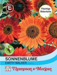 Sonnenblume Earth Walker | Sonnenblumesamen von Thompson & Morgan