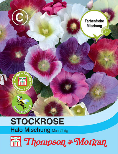 Stockrose Halo Mischung | Stockrosensamen von Thompson & Morgan