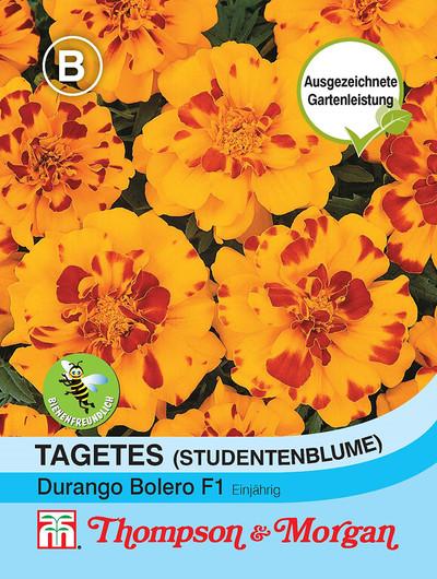 Studentenblume Durango Bolero | Studentenblumensamen von Thompson & Morgan