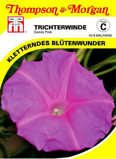 Trichterwinde Candy Pink von Thompson & Morgan [MHD 01/2018]