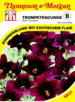 Trompetenzuge Black Trumpets von Thompson & Morgan