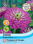 Zinnie elegans Purple Prince | Zinniensamen von Thompson & Morgan