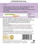 Wildblume Wilde Karde | Wildblumensamen von Thompson & Morgan