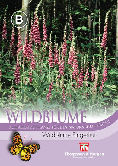 Wildblume Fingerhut   Wildblumensamen von Thompson & Morgan