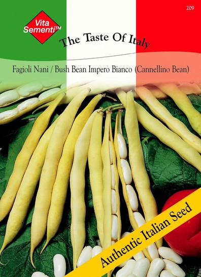 Bohnen - BuschBohnen - - Fagioli Nani Impero Bianco (Cannellino Bohne) von Thompson & Morgan