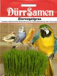 Ziervogelgras | Ziervogelgräsersamen von Dürr Samen [MHD 12/2019]