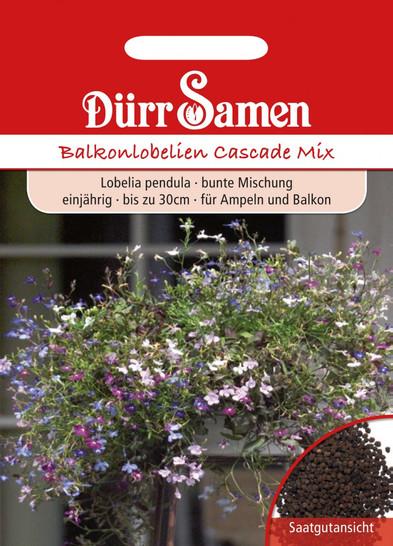 Balkonlobelie Cascade Mix | Balkonlobeliensamen von Dürr Samen