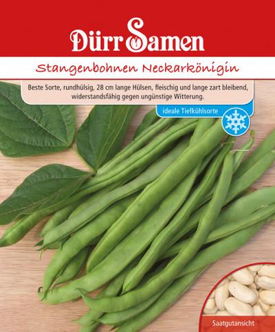 Stangenbohne Neckarkönigi, 250 g | Stangenbohnensamen von Dürr Samen