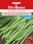 Buschbohne Primel 250 g | Buschbohnensamen von Dürr Samen