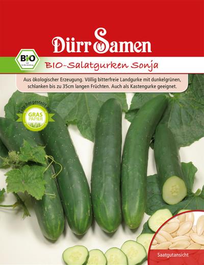 Salatgurke Sonja | Bio-Salatgurkensamen von Dürr Samen