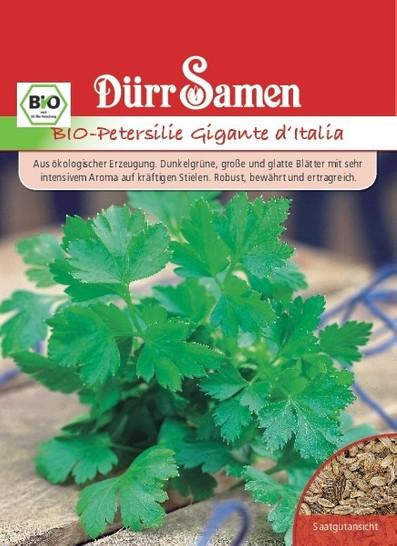 Petersilie Gigante d'Italia | Bio-Petersiliensamen von Dürr Samen